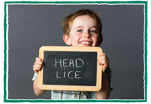 Back to School Head Lice